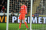 Petr Cech, the Chelsea goalkeeper looks on.Barclays Premier League match, Swansea city v Chelsea at the Liberty Stadium in Swansea, South Wales on Saturday 17th Jan 2015.<br /> pic by Andrew Orchard, Andrew Orchard sports photography.
