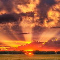 Mammatus at sunset over central Kansas.