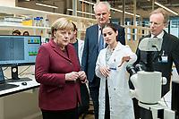 """26 FEB 2019, BERLIN/GERMANY:<br /> Angela Merkel (L),  CDU, Bundeskanzlerin, laesst sich von Zoe Mendelsohn (R), Doktorandin aus dem Labor von Nikolaus Rajewsky ein """"Mini-Gehirn"""" (Organoid) in der Petrischale unter dem Mikroskop zeigen, (im Hintergrund Prof. Dr. Nikolaus Rajewsky (L) und Prof. Dr. Martin Lohse (R)), waehrend einem Rundgang der Kanzlerin durch das Labor anl. der Eroeffnung des zweiten Standorts des Max-Delbrueck-Centrums fuer Molekulare Medizin (MDC) in Berlin-Mitte<br /> IMAGE: 20190226-01-0<br /> KEYWORDS: Max-Delbrück-Centrum"""