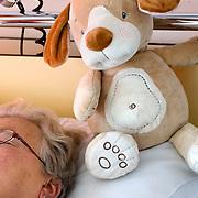 Nederland Rotterdam  31-08-2009 20090831 Foto: David Rozing .Serie over zorgsector, Ikazia Ziekenhuis Rotterdam, afdeling neurologie.Een vrouw van middelbare leeftijd op zaal ligt op bed en rust uit, naast haar liggen knuffels teddybeer. A woman is resting in hospitalbed, at her side are stuffed animal toys teddybear to keep her company .Foto: David Rozing ..Holland, The Netherlands, dutch, Pays Bas, Europe, op zaal liggen, knuffels, knuffelbeesten, knuffeldier, knuffeldieren, moral support, blijk van affectie, steuntje in de rug,  steunbetuiging,ziektekosten, zorgverlening, eenzaam, lonely, teddybears, teddyberen