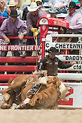 Bareback rider Chuck Schmidt of Keldron, South Dakota goes down with his bronco during the Bareback Championships at the Cheyenne Frontier Days rodeo in Frontier Park Arena July 26, 2015 in Cheyenne, Wyoming. Frontier Days celebrates the cowboy traditions of the west with a rodeo, parade and fair.