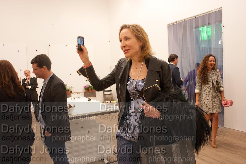 MICHAELA DE PURY, Damien Hirst, Tate Modern: dinner. 2 April 2012.