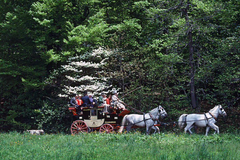 Winterthur Museum & Country Estate, Winterthur, Delaware, Point to Point Races, Antique carriage parade