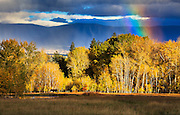 A passing storm and rainbow highlight the fall colors in Montana's Bitterroot Valley.
