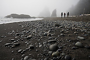 Backpackers hike over sand and pebbles along the misty coast at Rialto Beach, Olympic National Park, Washington.