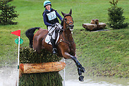 Iron IV ridden by Selina Milnes in the Equi-Trek CCI-L4* Cross Country during the Bramham International Horse Trials 2019 at Bramham Park, Bramham, United Kingdom on 8 June 2019.