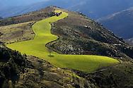 France, Languedoc Roussillon, Lozère, Cévennes, Corniche des Cévennes