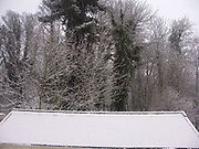 A1FNF9 Snow on garage roof and woods