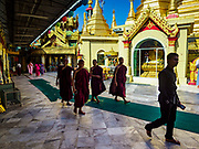 18 NOVEMBER 2017 - YANGON, MYANMAR: Buddhist monks walk through Sule Pagoda in central Yangon. Pope Francis is visiting Myanmar, September 27-30. It will be the first visit by a Pope to the overwhelmingly Buddhist nation. He will meet with the Aung San Suu Kyi and other political leaders and will participate in two masses in Yangon. The Pope is expected to talk about Rohingya issue while he is in Myanmar. The Rohingya are persecuted Muslim minority in Rakhine state in western Myanmar. It's not clear how Myanmar's politically powerful nationalist monks will react if the Pope openly talks about the Rohingya. In the past, the monks have led marches and demonstrations against foreign diplomatic missions when foreign ambassadors have spoken in defense of the Rohingya. There is not much visible sign of the Pope's imminent visit in Yangon, which is estimated to be more than 90% Buddhist.    PHOTO BY JACK KURTZ