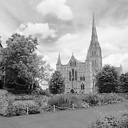 Salisbury Cathedral With Foreground Garden - Salisbury, UK - Black & White