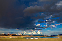 Mongolie, Province de Bayan Olgii, Campement de yourte au lac Bayan Nuur près dans le parc national de Tsambagarav, Population Kazak // Mongolia, Bayan Olgii province, Yurt camp near the Bayan Nuur lake on the Tsambagarav National Parc, Kazak population