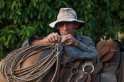 Tommy Kenyon<br /> Saddle Mountain Ranch<br /> Savanna <br /> Rurununi<br /> GUYANA<br /> South America,<br /> cattle