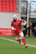 Jake Ball of the Scarlets makes a break. Guinness Pro12 rugby match, Scarlets  v Cardiff Blues at the Parc y Scarlets in Llanelli, West Wales on Saturday 2nd April 2016.<br /> pic by  Andrew Orchard, Andrew Orchard sports photography.
