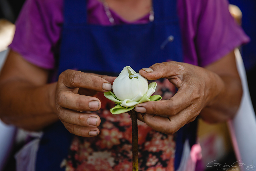 A florist folding lotus flowers into decorative shapes to be used for religious offerings or for decoration, Pak Khlong Talat, Bangkok, Thailand