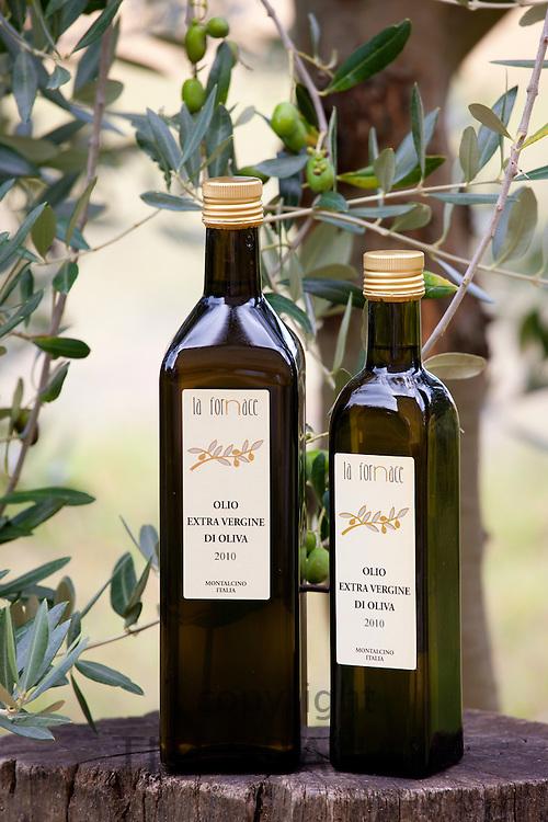 Olive oil, Olio Extra Vergine di Oliva 2010 at La Fornace Azienda Agricola at Montalcino in Val D'Orcia, Tuscany, Italy