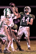 Anna at Elyria Catholic varsity football on November 3, 2018. Image © David Richard and may not be copied, posted, published or printed without permission.