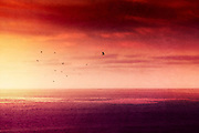 Atlantic Ocean at sunrise seen from La Palma, Canary Islands, texturized photograph<br /> Prints & more: https://society6.com/product/red-sunset-over-the-atlantic_print#1=45