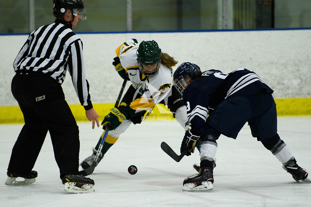 2nd year forward Lilla Carpenter-Boesch (17) of the Regina Cougars in action during the Women's Hockey home game on October 14 at Co-operators arena. Credit: Arthur Ward/Arthur Images