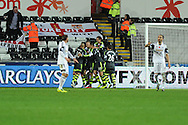 Stoke city 's players celebrate after Charlie Adam  scores his sides 3rd goal from a penalty to end match 3-3.Barclays Premier league, Swansea city v Stoke city at the Liberty Stadium in Swansea, South Wales on Sunday 10th November 2013. pic by Andrew Orchard, Andrew Orchard sports photography,
