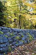 Cemetery with rock wall.