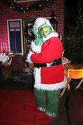 Dutch X-Mas Con is hét popcultuur evenement in Nederland, met een vleugje kerst! Tijdens deze editie zal Dutch X-Mas Con veel aandacht besteden aan cosplay, naast de gebruikelijke activiteiten zoals beroemde guests, tekenaars, dealers en nog veel meer.<br /> <br /> Op de foto:  The Grinch