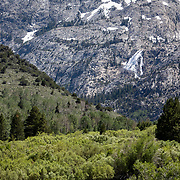 The Eastern Sierra's towns of Mammoth Lakes, June Lakes and surrounding areas weathered a historical and record producing winter snowfall that carried over into the summer. The waterfall over Silver Lake and creek were at capacities seldom seen in late June.