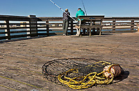 NC01398-00...NORTH CAROLINA - A take-up net lieing on the deck of Jennettes Pier on the Outer Banks at Nags Head.
