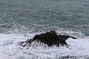 An outcrop of small basalt columns at Arnastappi, along the south coast of the Snaefellsnes Peninsular in Western Iceland