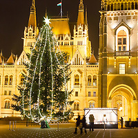 Christmas tree stands in front of the Hungarian Parliament in central Budapest, Hungary on December 10, 2014. ATTILA VOLGYI