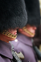 At the Tower of London, a row of British Royal Guard (Her Majesty's Coldstream Regiment of Foot Guards) stand in purple overcoats with guns and bayonets by Traitor's Gate, inside the Tower walls. The hat is commonly known as a busby and is made of fur from the Canadian brown bear. The British Army has regiments of both Horse Guards and Foot Guards predating the English Restoration (1660), and since the reign of King Charles II these have been responsible for guarding the Sovereign's palaces.