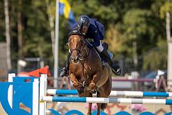 De Grande Christophe, BEL, Naturele van het Reigershof<br /> Belgian Championship 7 years old horses<br /> SenTower Park - Opglabbeek 2020<br /> © Hippo Foto - Dirk Caremans<br />  13/09/2020