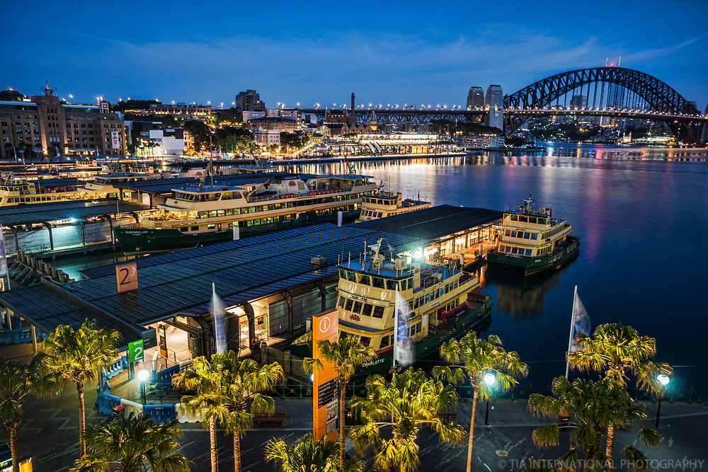 Circular Quay, Overseas Passenger Terminal & Harbour Bridge, Morning