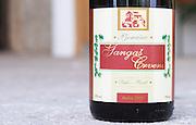 Bottle of Pjenusac Gangas Crveni Suhi Brut 1999 red sparkling wine. Label detail. Vita@I Vitaai Vitai Gangas Winery, Citluk, near Mostar. Federation Bosne i Hercegovine. Bosnia Herzegovina, Europe.
