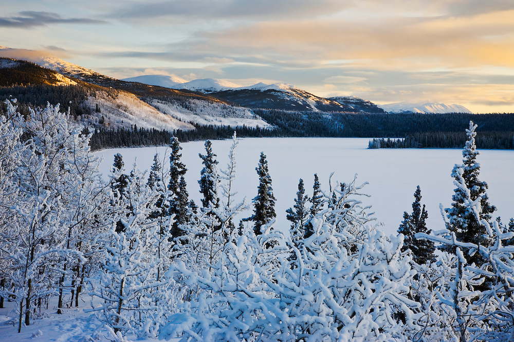 Snow covered mountains, trees and a frozen lake create a winter landscape at low midday sub-arctic light, Cowley Lake, The Yukon Territory, Canada