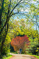 Woman walking her dog on the Highline Canal path on an Autumn afternoon, Littleton, Colorado USA.