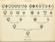 Table Of Descents (Family Tree) Heraldry is a discipline relating to the design, display and study of armorial bearings (known as armory), as well as related disciplines, such as vexillology, together with the study of ceremony, rank and pedigree. Armory, the best-known branch of heraldry, concerns the design and transmission of the heraldic achievement. The achievement, or armorial bearings usually includes a coat of arms on a shield, helmet and crest, together with any accompanying devices, such as supporters, badges, heraldic banners and mottoes. Copperplate engraving From the Encyclopaedia Londinensis or, Universal dictionary of arts, sciences, and literature; Volume IX;  Edited by Wilkes, John. Published in London in 1811