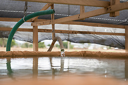 30 May 2019, Mokolo, Cameroon: A water pumping station near Mayo Luti ('River Luti') provides water to the Minawao camp for Nigerian refugees. The Minawao camp for Nigerian refugees, located in the Far North region of Cameroon, hosts some 58,000 refugees from North East Nigeria. The refugees are supported by the Lutheran World Federation, together with a range of partners.