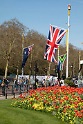 Flags of the Commonwealth flying to celebrate the week of Commonwealth Heads of Government Meeting in London, England, United Kingdom.