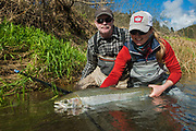This big steelhead hen was landed by a Seattle angler on the Wilson in Oregon. A six year quest and a much deserved reward.