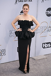 January 27, 2019 - Los Angeles, California, U.S - AMY ADAMS on the red carpet of the 25th Annual Screen Actors Guild Awards held at the Shrine Auditorium. (Credit Image: © Prensa Internacional via ZUMA Wire)