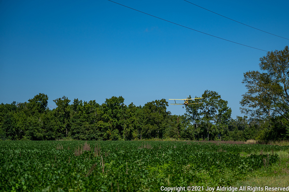 Crop duster spraying fields in rural South Carolina in a bi-plane. Image taken by Joy Aldridge with a NIKON Z 6_2 and NIKKOR Z 24-70mm f/2.8 S at 70mm, ISO 100, f2.8, 1/5000.