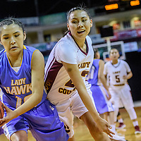 Dulce Hawk Lauryn Vigil (15), left, holds off Tohatchi Cougar Voneisha Cecil (22) in a District 3A quarterfinal at the Santa Ana Star Center in Rio Rancho Tuesday.