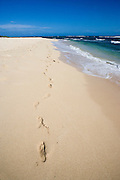 Footprints , footprint insand, North Shore, Hawaii<br />