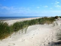 VLIELAND - Duinen met strand en zee. ANP COPYRIGHT KOEN SUYK