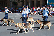 Air force personnel marching in 2005 ANZAC day parade, Brisbane<br /> <br /> Editions:- Open Edition Print / Stock Image