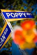 Poppy Ave., and Ocean Blvd in Corona Del Mar Orange County California