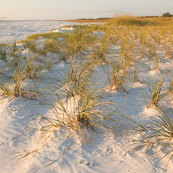 North Beach at Fort De Soto Park in Pinellas County, Florida.