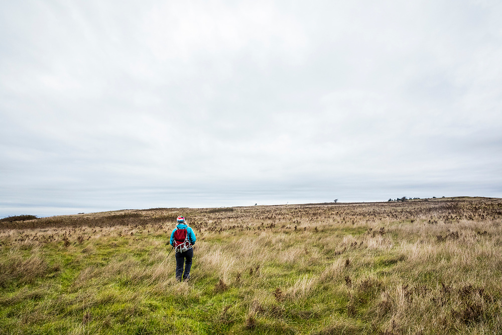 A woman hiking in the open fields of American Camp National Historical Park, San Juan Island, Washington, USA.