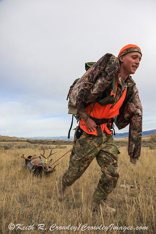 Using a game sled, successful backcountry hunter Dominic Weldon drags a nice mule deer buck out of the hills east of Dillon, Montana.