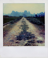 Polaroid SX70 landscape picture of a track in the countryside with a nice perspective and karstic mountains in background. Guangxi province, China, Asia.